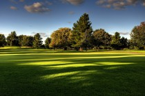 Golf-Field_1680x1050_8321